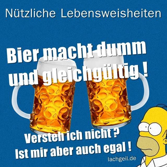 lebensweisheiten bier macht dumM und gleichgültig ist mir doch egal lustig lol spruchbild