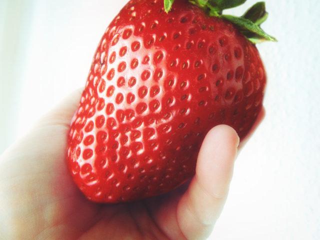 die größte erdbeere der welt kommt aus deutschland. weltrekord