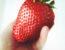 Größte Erdbeere der Welt und Weltrekord kommt aus Lünen